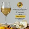 Дегустация сыра с плесенью и белым вином